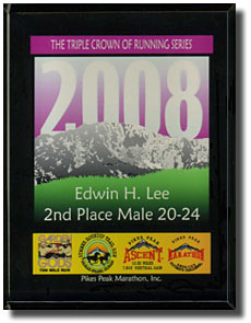 2008 TCR Series Division Award